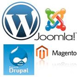 we can work with: wordpress/joomla/drupal/magento/bespoke