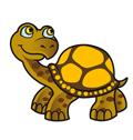 Webtrendz Turtle package